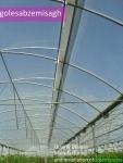 ساخت گلخانه- احداث گلخانه