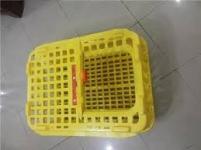 قفس مرغ حمل زنده,قفس حمل مرغ زنده دست دوم,قیمت قفس حمل مرغ زنده,قفس پلاستیکی حمل مرغ زنده