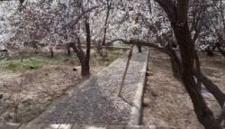 باغ ویلا 1750 متری در کردزار