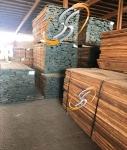 فروش چوب گردو آمریکایی