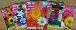 فروشگاه اینترنتی بذر گل و گیاه روکالبا