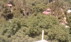 اکازیون حراج 25% تخفیف فروش فوری زمین باغچه ویلا خانه در دماوند