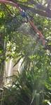 تولید کننده تایمر ابیاری با شیربرقی