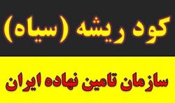 خرید و فروش کود سوپر فسفات در مشهد