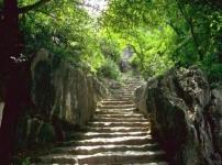 تهران : فروش یا  مشارکت  در  پروژه گردشگری کوهستانی