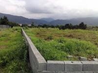 300 زمین ،اکازیون،عباس آبادمتل قو