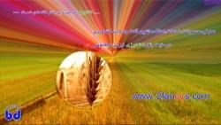 بازار کشاورزی ایران