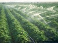 پیمانکاری امور زراعت وآبیاری