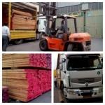 واردات چوب راش،واردات چوب توسكا،واردات چوب شاه بلوط،  قیمت چوب جنگلی، فروش چوب راش گرجی، قیمت انواع چوب،قیمت چوب راش گرجستان